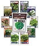 10 Variety, 2,700+ Heirloom Seeds, Culinary Herb Seed Collection - 100% NON GMO Basil, Chives, Cilantro, Dill, Lavender, Oregano, Parsley, Rosemary, Sage, and Thyme Herb Seeds by Sustainable Seed