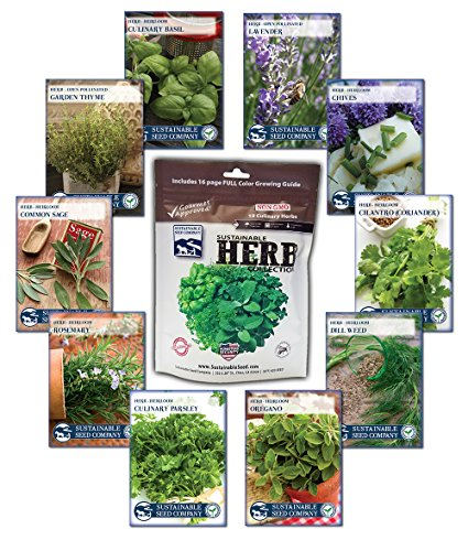 10 Variety, 2,700+ Heirloom Seeds, Culinary Herb Seed Collection - 100% NON GMO Basil, Chives, Cilantro, Dill, Lavender, Oregano, Parsley, Rosemary, Sage, and Thyme Herb Seeds by Sustainable Seed - Sage Herb Plant