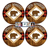 Monthly Baby Stickers - Baby Month Stickers - Photo Month Stickers Buffalo Plaid Bear