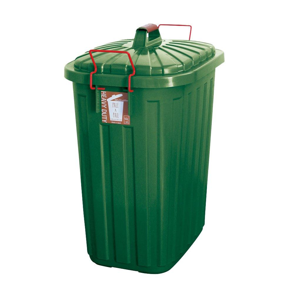 日本製 ダストボックス 屋外 屋内 ふた付き 大容量 ごみ箱 ロック付き ごみ入れ 箱 60L フォレストグリーン B0719J2MYQ フォレストグリーン フォレストグリーン