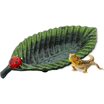 FOYO Iron Leaf Reptile Food Water Bowl Feeding Dish Multipurpose Food Container