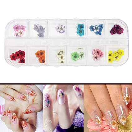 Amazon Nail Dried Flowers 3d Nail Art Sticker12 Colors