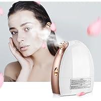 Lavany Nano Ionic Mist Moisturizing Face Steamer Sprayer
