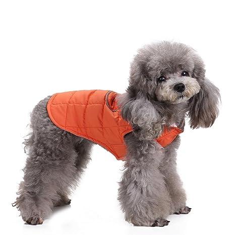 Zunea - Arnés de invierno para mascotas de algodón acolchado suave ...