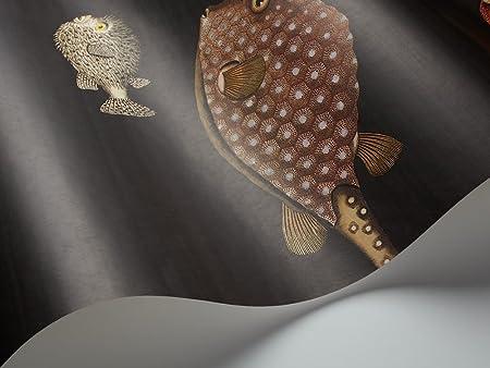 Cole Son Fornasetti Ii Collection Acquario Wallpaper 97