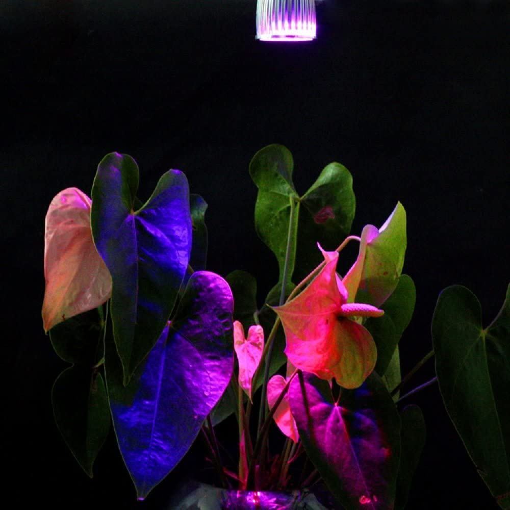 GU10 10W HiqLED/® 10W Full Spectrum Led Grow Light for Flower Plant Hydroponics System and Garden Greenhouse