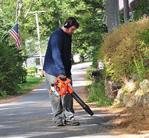 Tanaka TRB24EAP 23.9cc 2-Cycle Gas Powered 170 MPH Handheld Leaf Blower (CARB Compliant)
