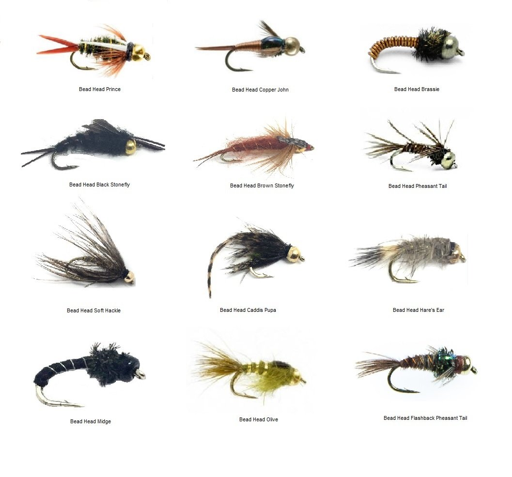 Fly Fishing Trout Flies - Bead Head Nymph Assortment - 72 Wet Flies in 12 Patterns - 3 Size Assortment 12,14,16 (2 of Each Size) by Feeder Creek