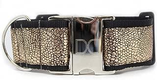 "product image for Diva-Dog 'Monty Metallic' 2"" Extra Wide Custom Engraved Dog Collar"
