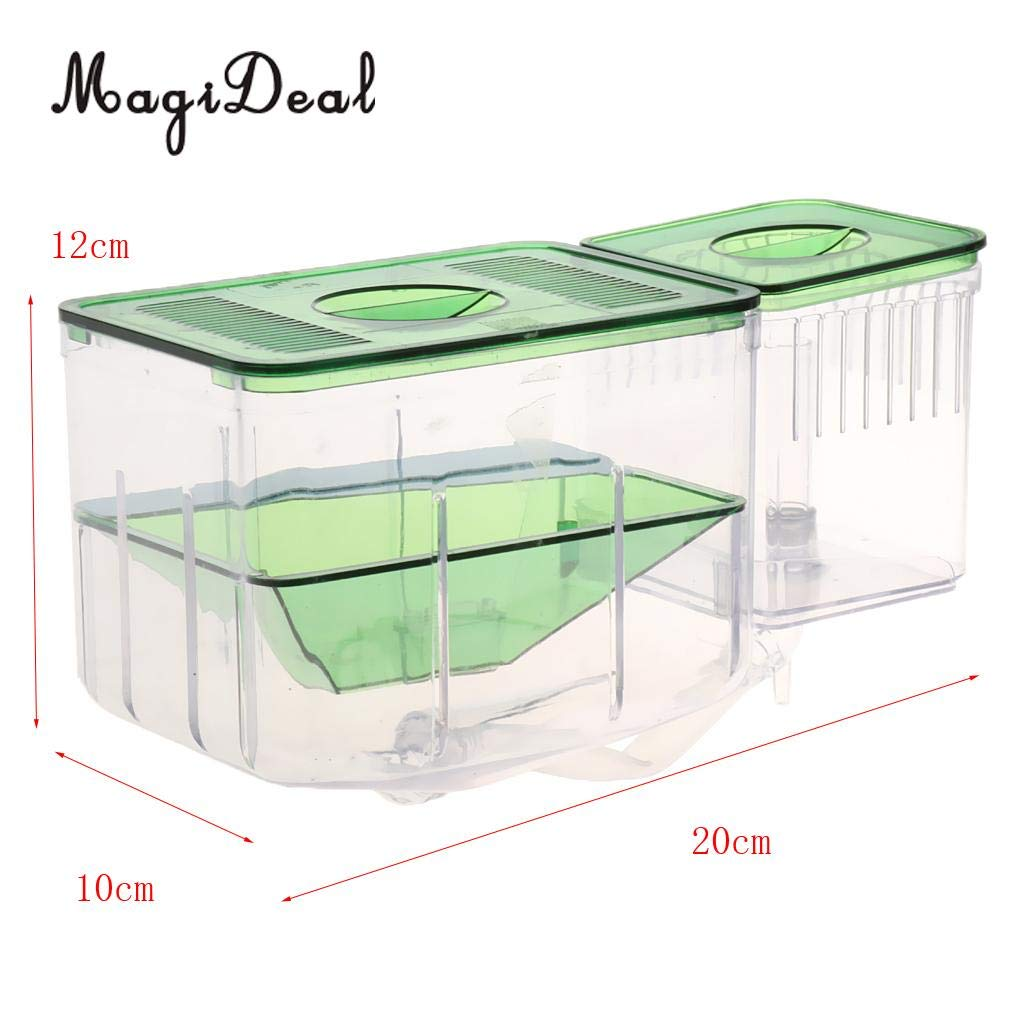 Kammas Clear Fish Breeding Isolation Box Tank Aquarium Auto Circulating Fish Hatchery Transparent 20 x 10x 12cm by Kamas (Image #2)