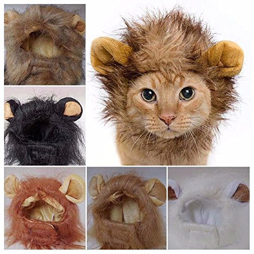 Cat Lion Costumes (RosyLife Lion Mane Wig for Dog and Cat Costume)
