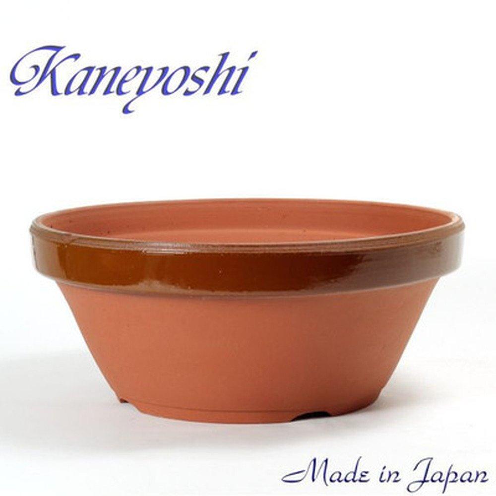 鉢 KANEYOSHI 【日本製】 陶器 植木鉢 ダ温鉢浅 3.5号 B072LD9BH5 3.5号  3.5号