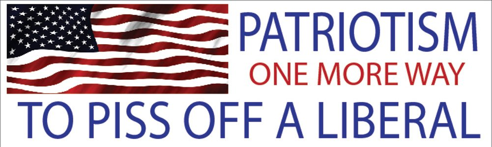 10x3 Patriotic Bumper Sticker Auto Decal USA Flag America Patriotism One More Way To Piss Off A Liberal Rogue River Tactical RR-2003 Patriotism