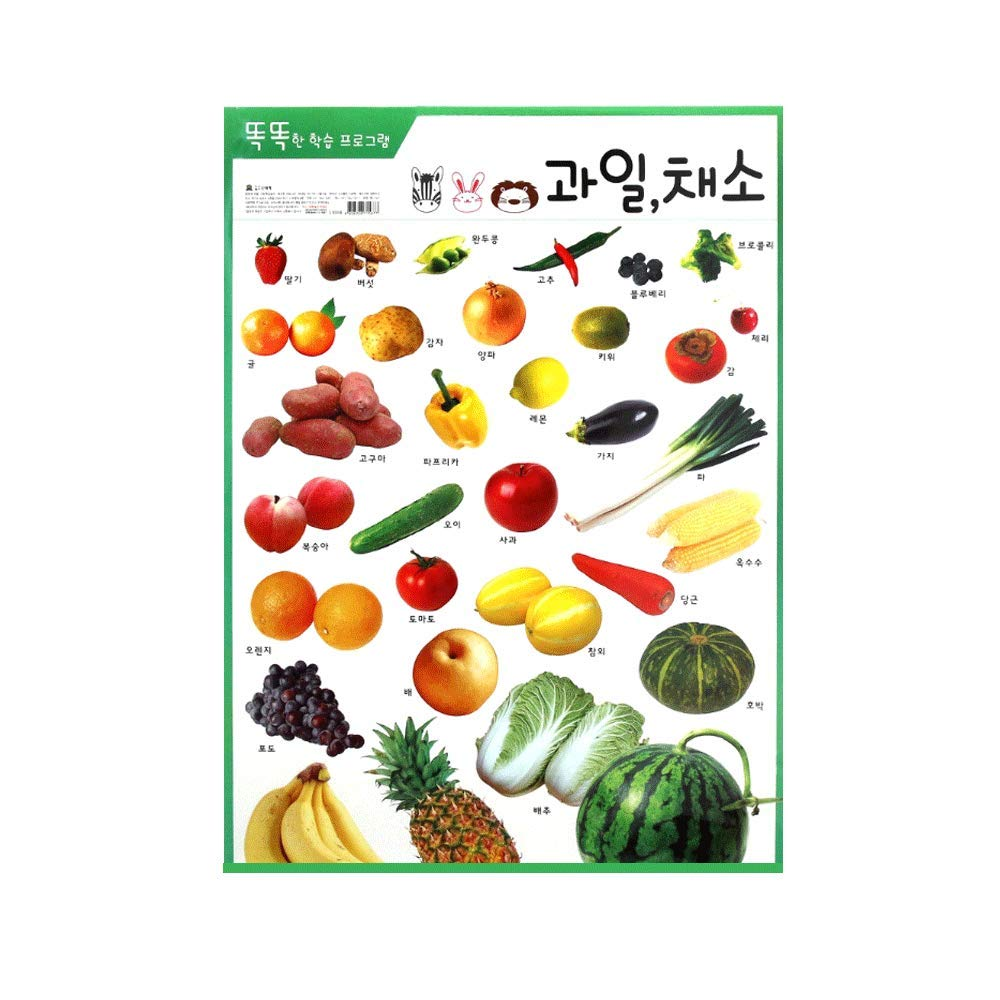 Korean Hangul Educational Poster Vegetable Laminated 20.8 in x 30.3 in by MrsBlabla