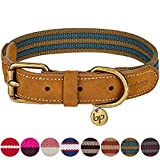 Leather Dog Collar - Blueberry Pet 8 Colors Polyester and Soft Genuine Leather Webbing Dog Collar in Navy and Olive, Large, Neck 18