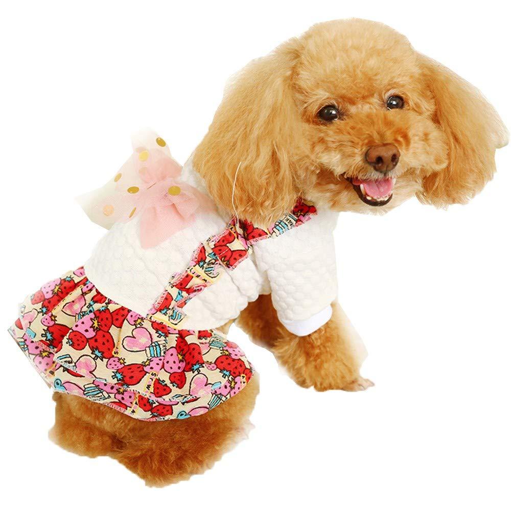 Mjjsk-Cute Pet Dog Panty Brief Bitch in Season Sanitary Pants for Girl Female
