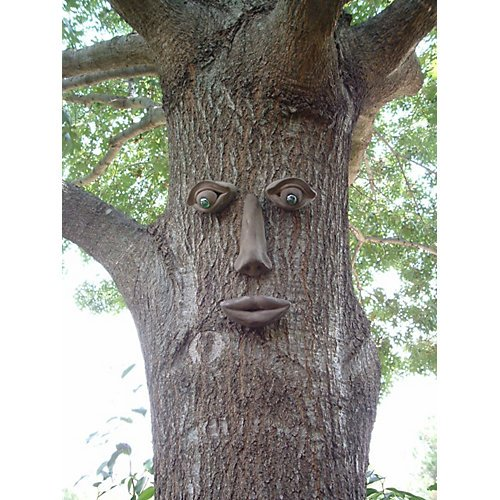 Tree Face Decorations For Your Outdoor Garden Spaces