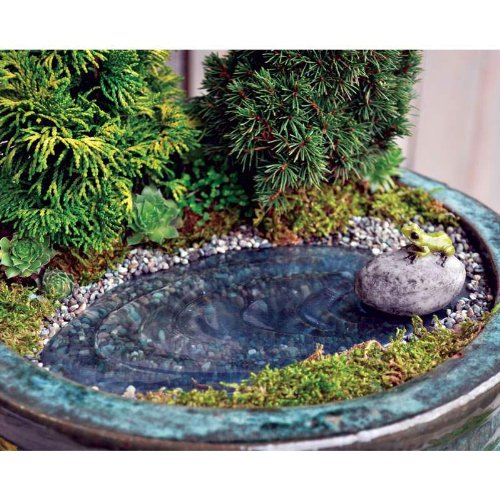 A mini-sized frog pond complete with pebbles and plastic plants.