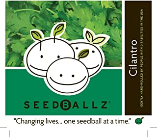product image for Seedballz Seedballz,Cilantro 4 OZ