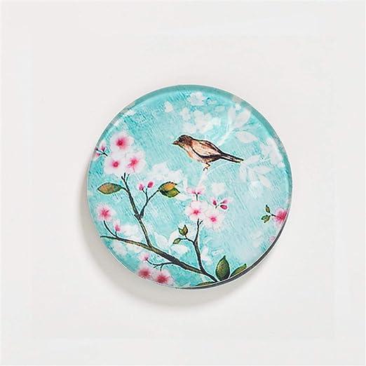Frima Imán para Nevera, diseño de pájaro pintando: Amazon.es ...