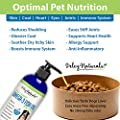Wild Caught Omega 3 Fish Oil for Dogs, Improves Shedding, Dry Skin, Itchy Skin, Arthritis Pain Relief for Dogs, Superior EPA/DHA Potency, GMO Free, Supplements for Dogs, Odor Free Fish Oil, 16 oz Pump