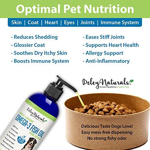 The 8 best dog supplements for shedding