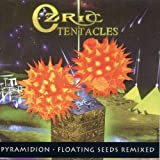 Pyramidion / Floating Seeds by Ozric Tentacles
