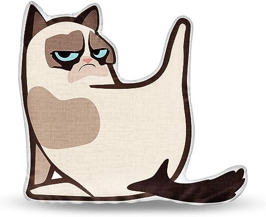 LiLiPi Dont Care-Grumpy Cat Decorative Accent Throw Pillow
