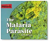 The Malaria Parasite (Parasites) 1st edition by Wyborny, Sheila (2005) Hardcover