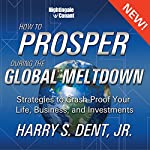 How to Prosper in the Global Meltdown: Strategies to Crash-Proof Your Life, Business, and Investments | Harry S. Dent