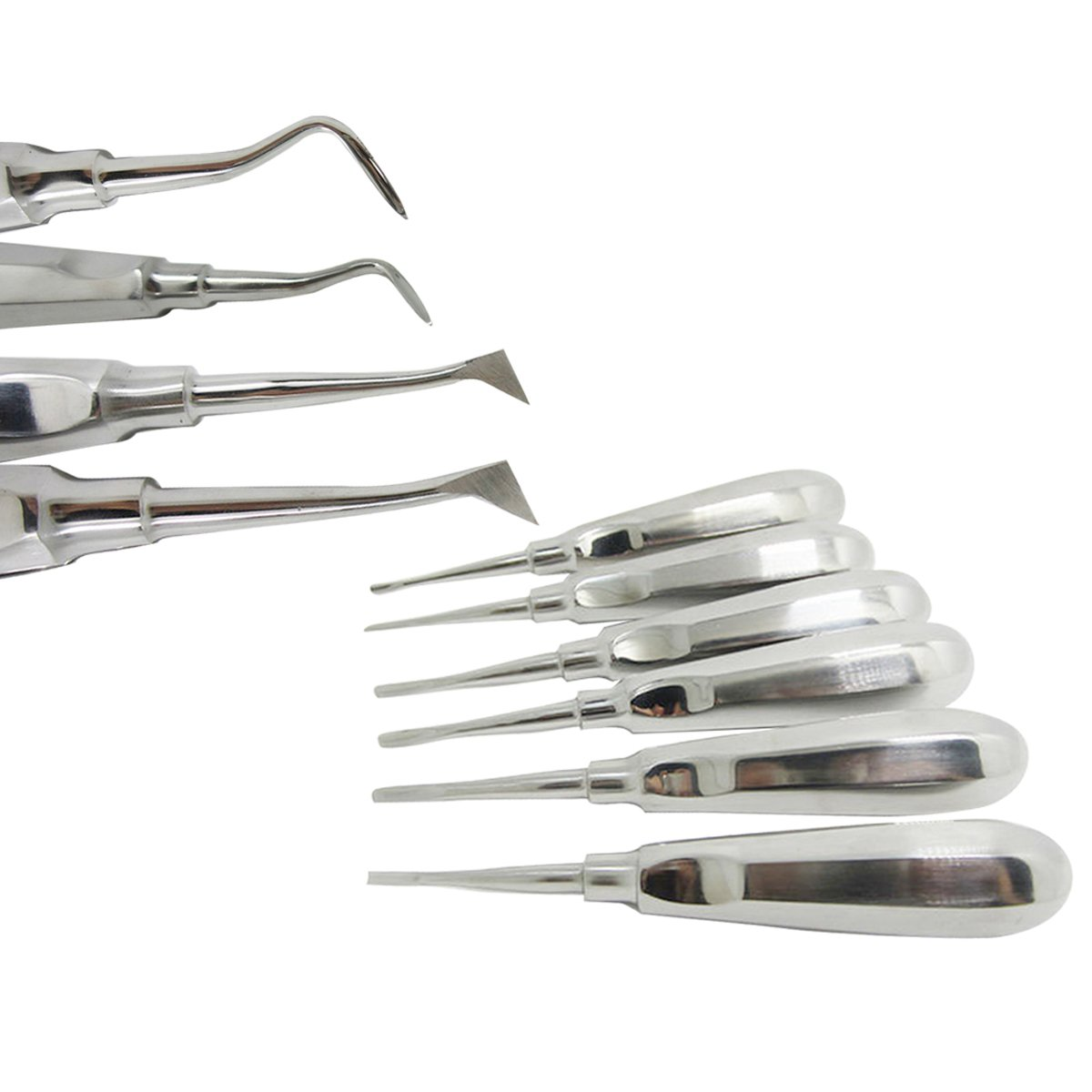Dental Stainless Steel Metal Teeth Extraction tool stainless steel Handle Tooth Straight Teeth Ting Oral Care Tools 10 Sets