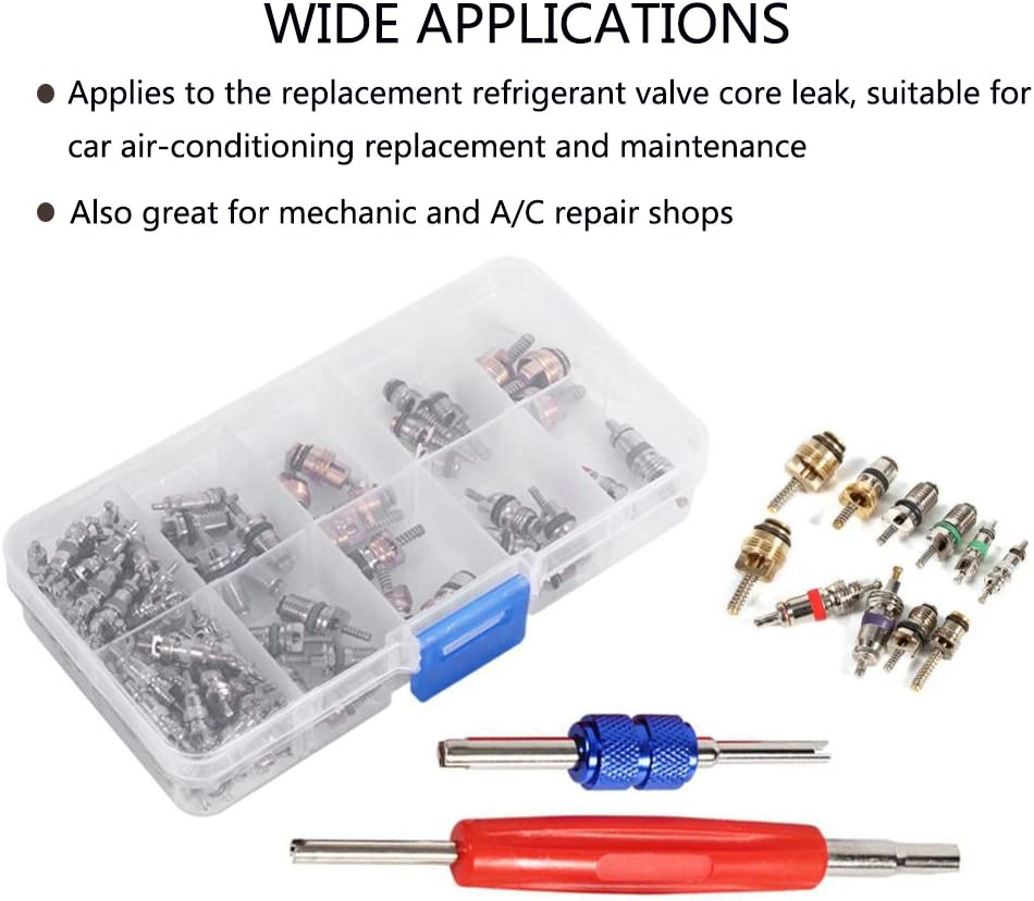 50x Auto Car A//C Core Valves R12//R134A Air Conditioning Assortment /& Remover Kit
