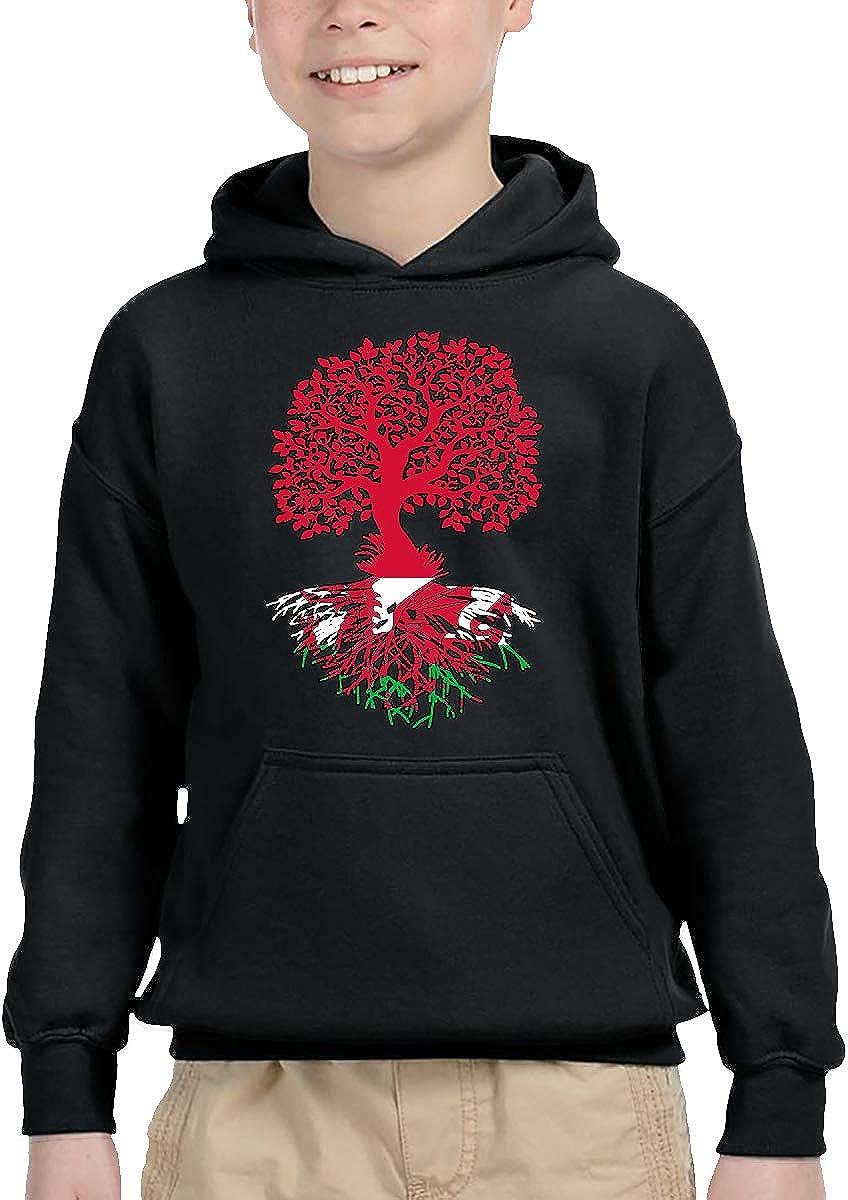 UGFGF-1S Welsh Flag Roots Toddler Boys Girls Long Sleeve Sweatshirt Hooded Hoodie 2-6T