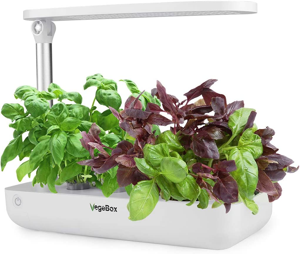 VegeBox Smart LED Hydroponics Growing System, Indoor LED Lighting Herb Garden Germination Kits (Table-Box, White)