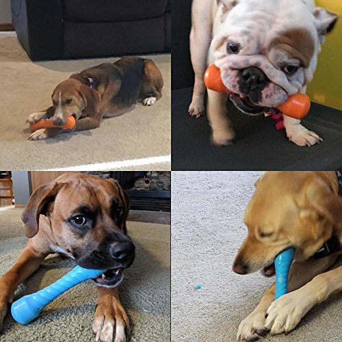 Chew Toys For Aggressive Chewers Indestructible Dog Tough