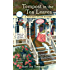 Tempest in the Tea Leaves (A Fortune Teller Mystery)