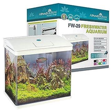 Todos Estanque Soluciones Nano Fish Tank Acuario Luces LED, tamaño pequeño, 29 L, Color Blanco: Amazon.es: Productos para mascotas