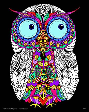 Amazon.com: Baby Owl - Fuzzy Velvet Detailed Coloring Poster 16x20 ...