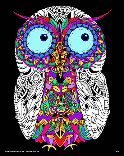 Baby Owl - Fuzzy Velvet Detailed Coloring Poster 16x20 - by Squidoodle