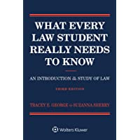 What Every Law Student Really Needs to Know: An Introduction to the Study of Law (Academic Success Series)