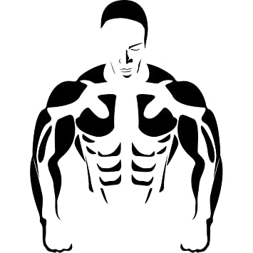 Body builder gym wall art stickers vinyl sticker wall art deco decal 50cm height