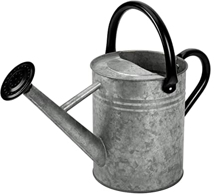 Cesun Metal Watering Can Galvanized Steel Watering Pot With Removable Spray Spout Movable Upper Handle 1 Gallon For Outdoors Gardening Vintage Zinc Garden Outdoor