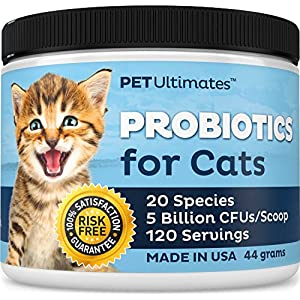 PetUltimates Probiotics for Cats - 20 Species - Stops Diarrhea & Vomiting, Cuts Litterbox Smell 1