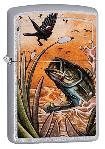 How to buy the best fish lighter?