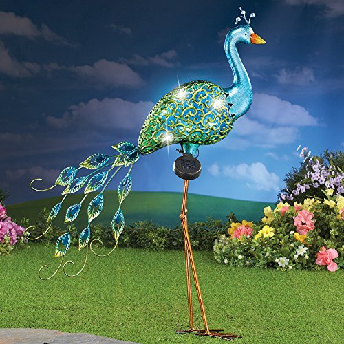 Outdoor Lighted Peacock - 2
