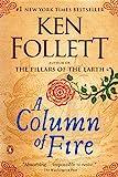 img - for A Column of Fire: A Novel (Kingsbridge) book / textbook / text book