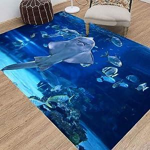 Jesmacti Rug Multi-Style Modern Interior Decoration Rug,Living Room Rug Rug, Angel Shark in Aquarium You Can Suitable for Living Room Bedroom Kindergarten Dormitory (3X5 Feet)