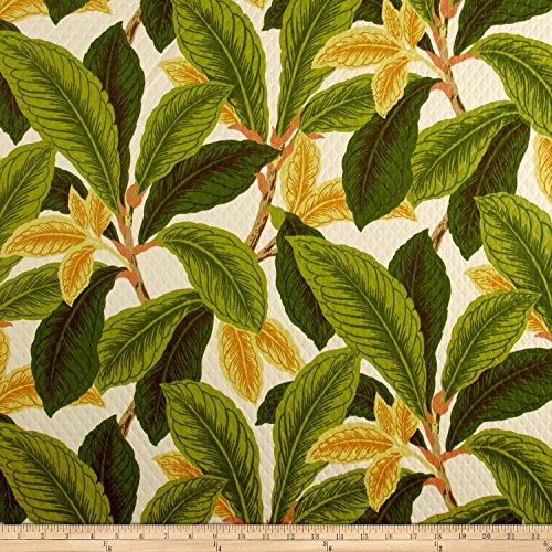 Richloom Fabrics 0566928 Richloom Patagonia Indoor/Outdoor Spring Fabric by The Yard,