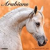 Arabians 2017 Wall Calendar