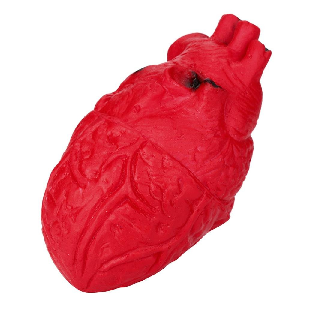 Scary Organ Heart Squishy Toys,Vinjeely Novelty Silicone Stress Ball Toy Decompression Toy for Kids and Adults